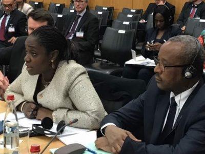 Photo News: Adeosun At Anti-Terrorism Financing Conference In Paris