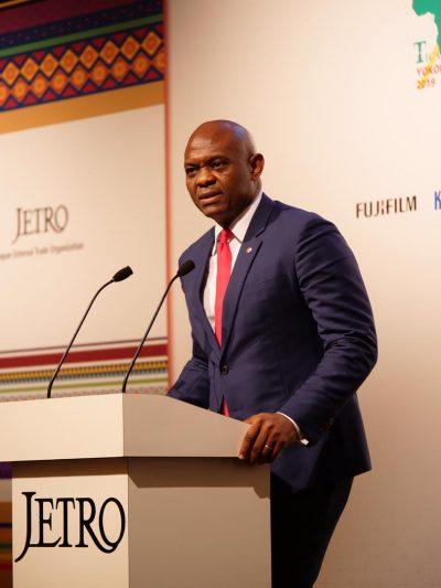 Invest 5% Of $50bn Pledge To Africa On Entrepreneurship, Elumelu Urges Japan