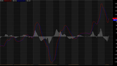Photo of Although NGSE Trading Pattern Supports Uptrend, Correction Still Possible