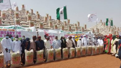 Photo of Emefiele Says 2.923m Farmers Cultivated 3.647ha Of Rice Under CBN's Anchor Borrowers In 5 Years