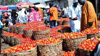 Photo of Buoyed By Soaring Food Price, Nigeria's Inflation Hits 17.33% In February