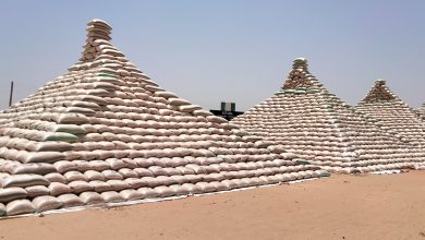 Photo of CBN Unveils Maize Pyramid, Says Will Resist Pressure From Importers- Emefiele
