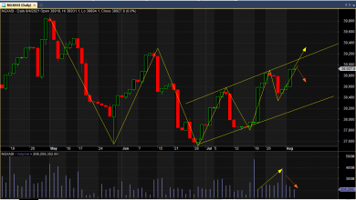 Photo of Caution Still On NGX As Investors Await Interim Div Banks, July CPI, Q2 GDP